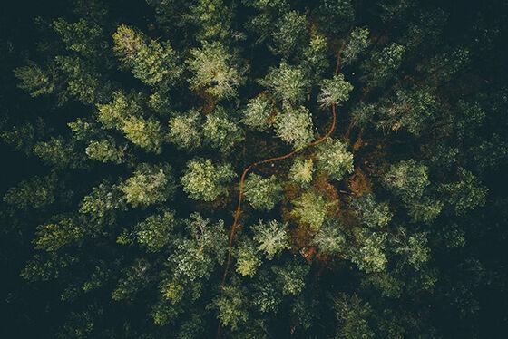 Foto Drone Paling Memukau 20