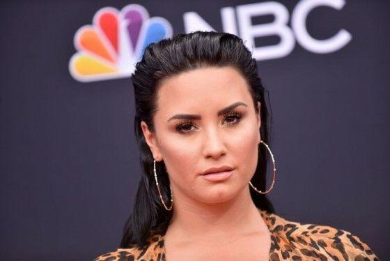 Demi Lovato Mugshot Artis Cilik Masuk Penjara Custom C0120