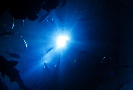 Tekanan Laut 3e277