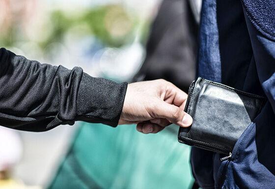 Wallet Pickpocket F1879