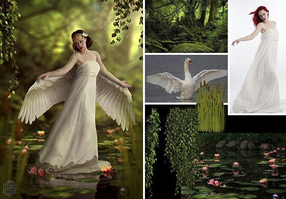 Master Photoshop Foto Biasa Jadi Luar Biasa 5