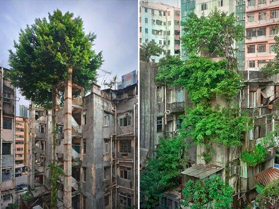 Foto Kota Mati Karena Kekuatan Alam 14