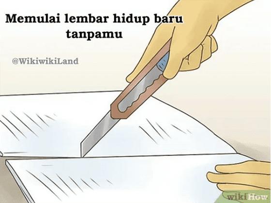Meme Wikihow Indonesia Part 2 02 42c5e