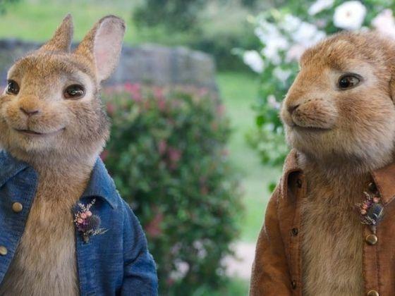 Download Peter Rabbit 2 The Runaway 58e4d