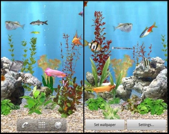 Wallpaper Aquarium 3D Bergerak 5 2da27