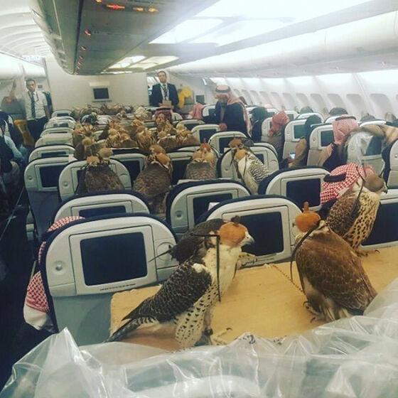 Foto Kejadian Unik Penerbangan 01