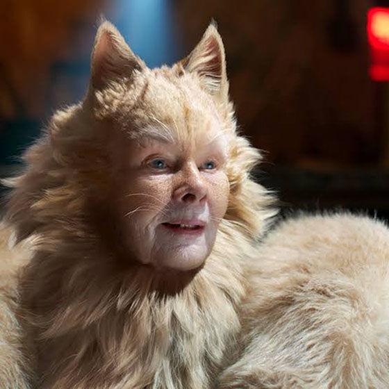 Nonton Film Cats 17fc0