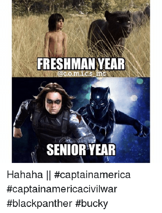 Meme Black Panther 2