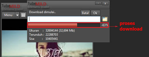 Download Youtube Dengan Tubemild 3