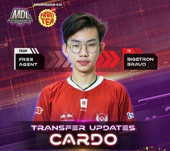 Cardo 6533c
