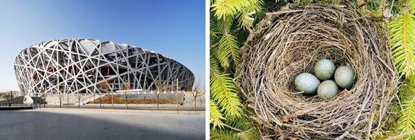 Bangunan Megah Terinspirasi Alam 3