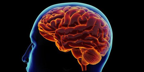 Kanker Otak Eb100