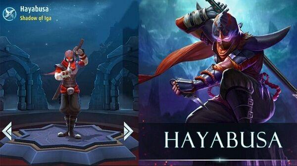 Hayabusa 7a03d