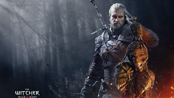 The Witcher 11765