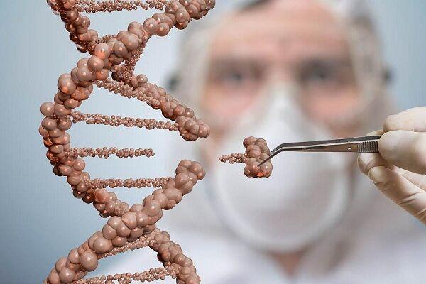 Manipulasi DNA 60f1b