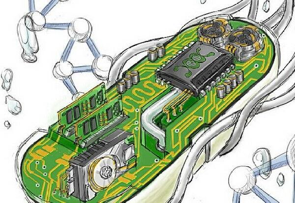 Syntheticbio Picsay 3e032