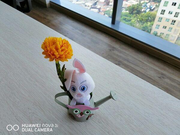 Huawei Nova 3i Oppo F7 10 C3490