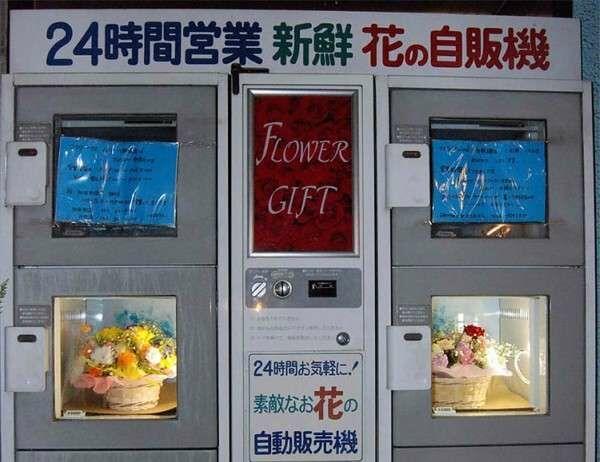Flowerarrangement Picsay Dcf3a