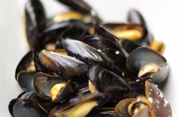 Steamed Mussels 610x404 B95d6