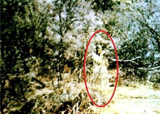 BIG 13 13 The Woman At Corroboree Roc Picsay 4918f