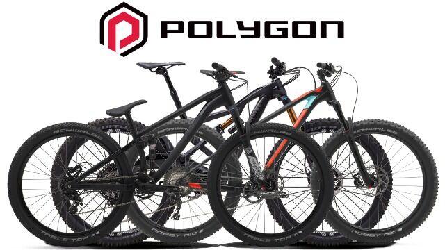 Polygon Be081