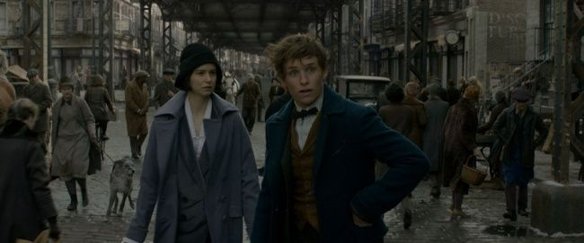 Fantastic Beasts And Where To Find Them 6