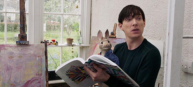 Peter Rabbit Boy