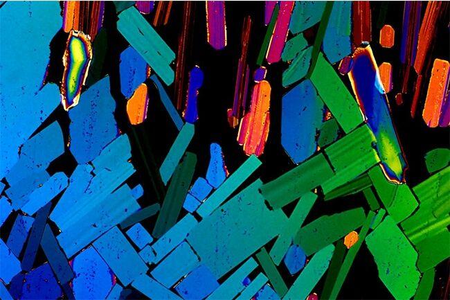 Minuman Beralkohol Dilihat Dari Mikroskop 6