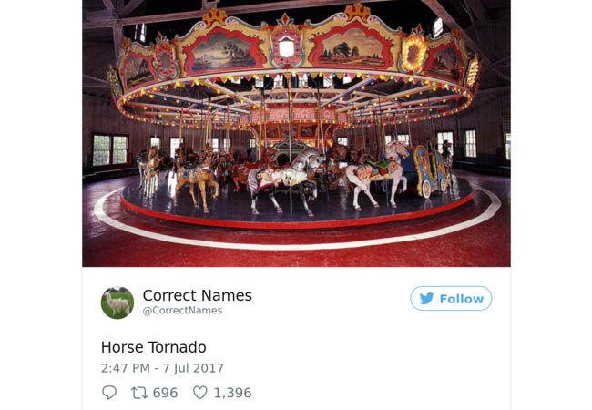 Name16