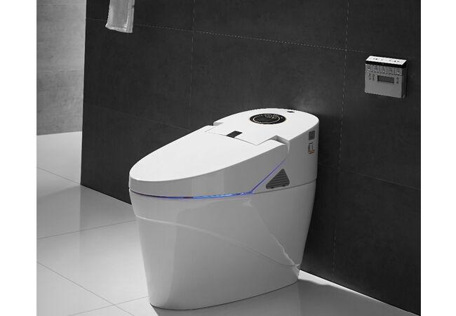 Toto Intelligence Toilet