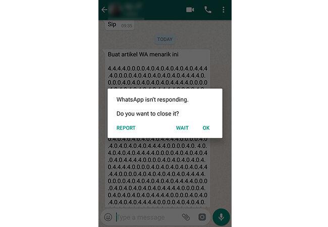 Tips Whatsapp Anti Lemot Prank