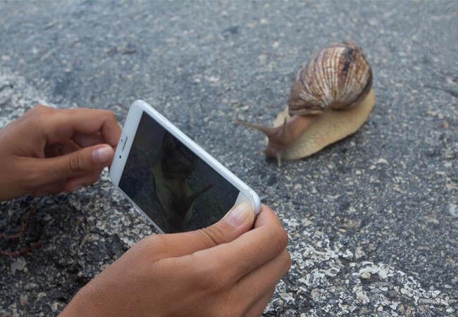 Smartphone Rusak 4 E99c4