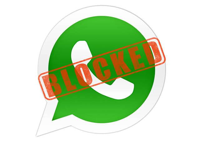 Bugs Whatsapp 2 Ce942