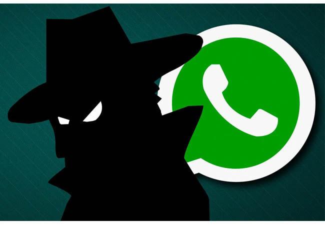 Bugs Whatsapp 4 005ff