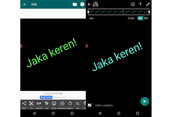status-whatsapp-berkedip-5