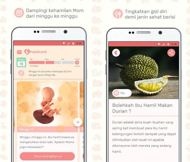 Aplikasi Ibu Hamil 3 A41a6
