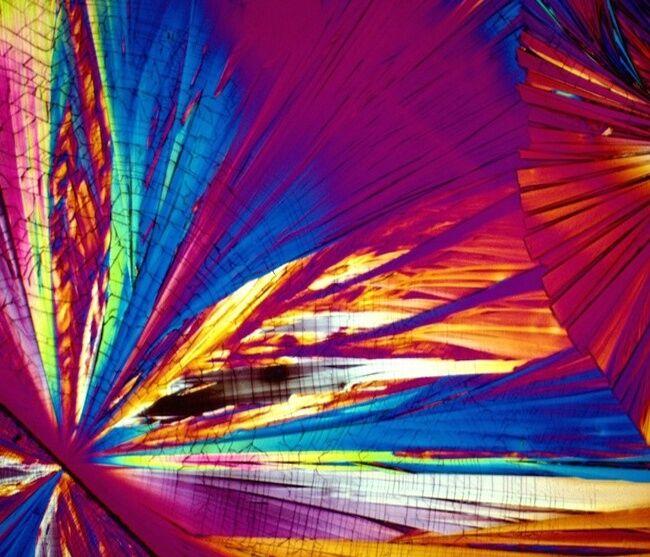 Minuman Beralkohol Dilihat Dari Mikroskop 22
