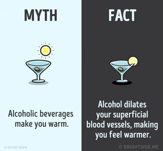 Mitos Fakta Tentang Tubuh Kita 8
