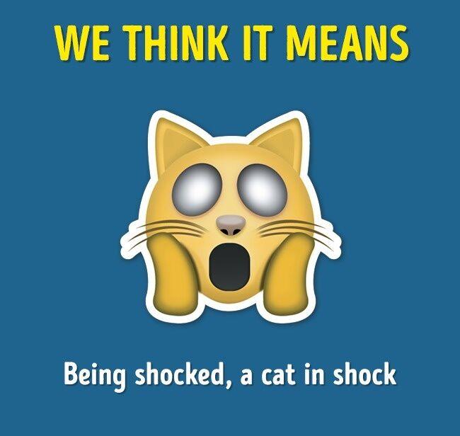 Emoji Yang Sering Salah Arti 1