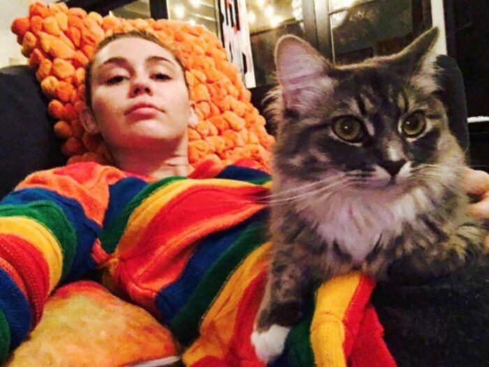 Miley Cyrus Kucing 1139b