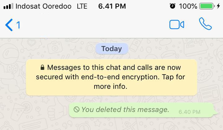 Cara Menarik Pesan Whatsapp Iphone 3 Eeb2d