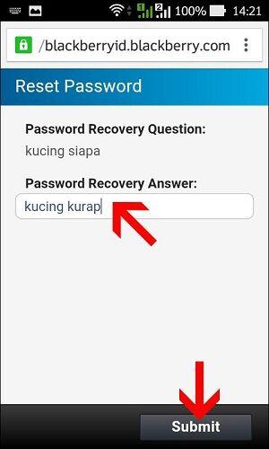 Lupa Password Bbm 7