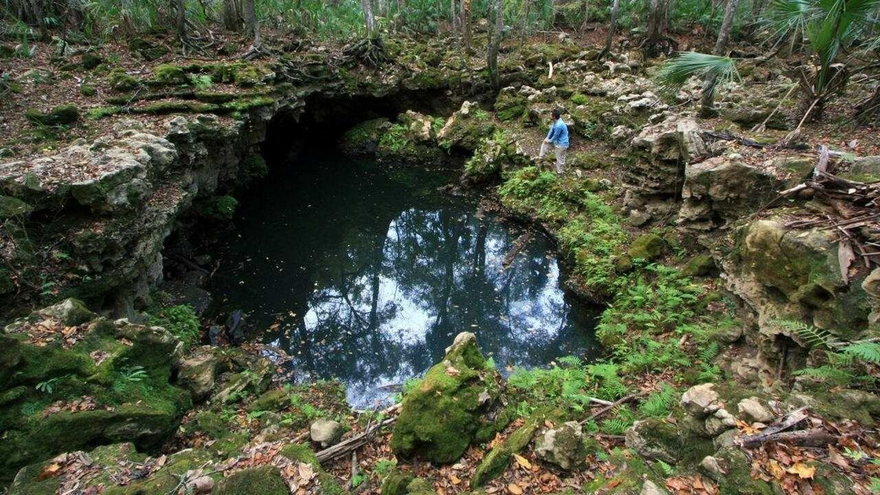 Lubang Dalam Di Sungai Aucilla Aad10