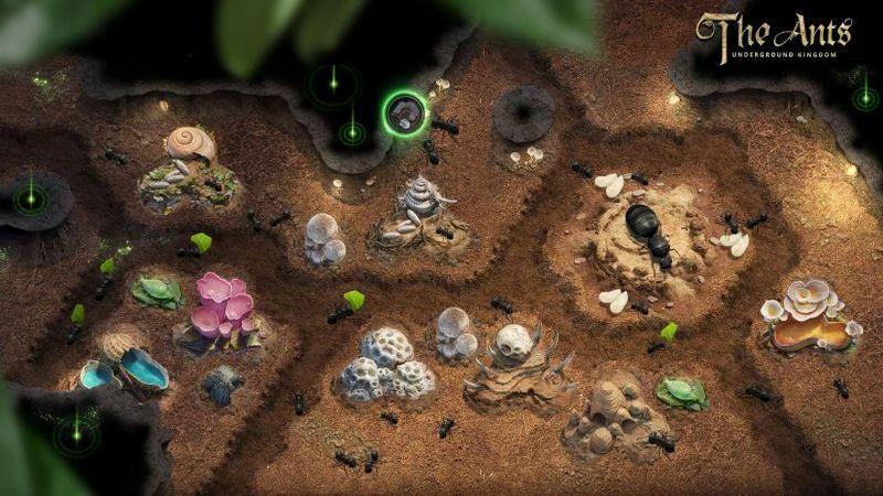 The Ants Underground Kingdom Tips 800x450 1 1e91e