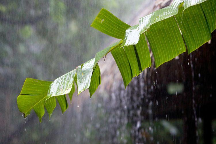 Caption Hujan Lucu Bahasa Jawa F3c20