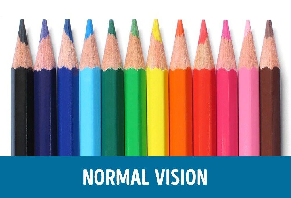 Perbandingan Mata Normal Dan Buta Warna 1