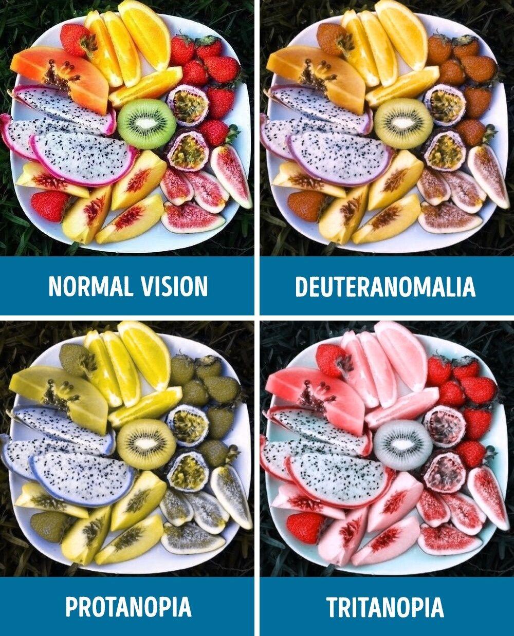 Perbandingan Mata Normal Dan Buta Warna 6