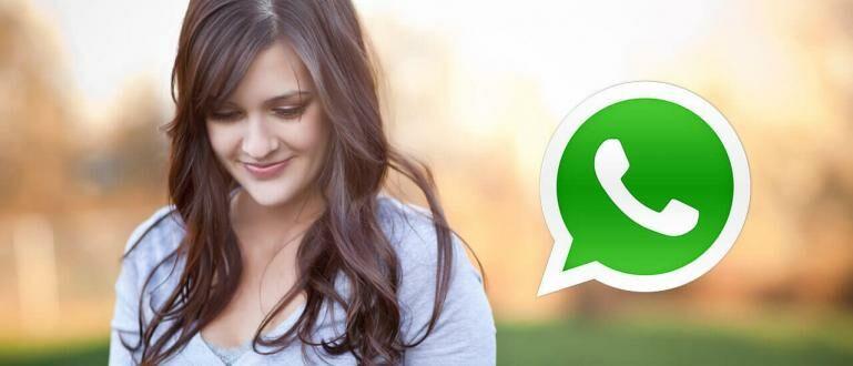 Keren! Begini Cara Membuat Status WhatsApp Berkedip