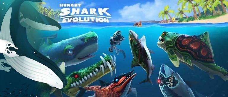 10 Game Ikan Makan Ikan Terseru dan Lucu di Android