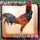 Chicken Fighter Indonesia
